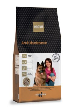 14kg_adult_maintenance_dog