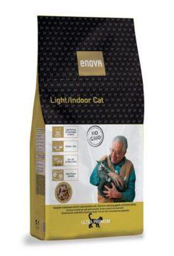 light-indoor-cat-540x500